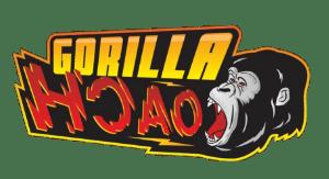 Gorilla Coach